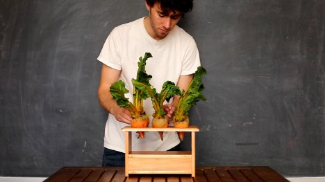 musical vegetables beetbox