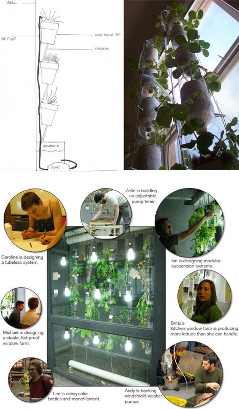 window garden tricks tips