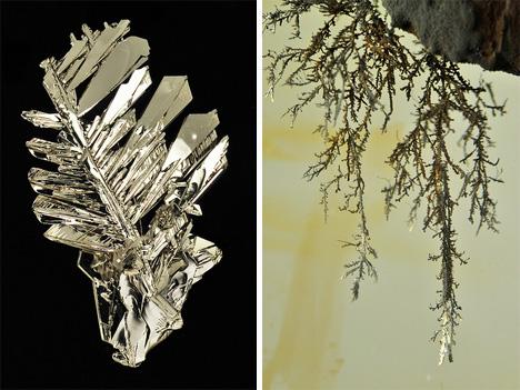 scientific elemental photography