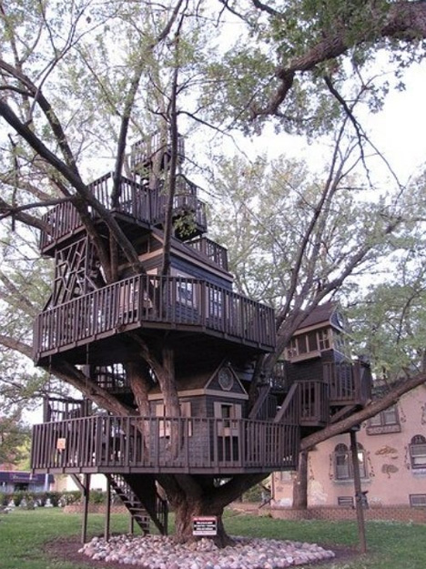 organic huge tree house