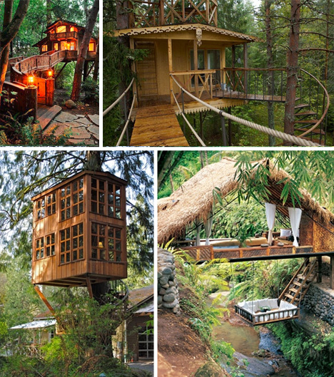 Treehouse taster 3 wildly different types of tree houses for Different kinds of homes