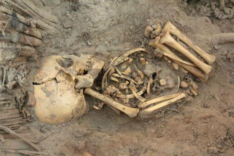 Human Bones Baby Skeletons