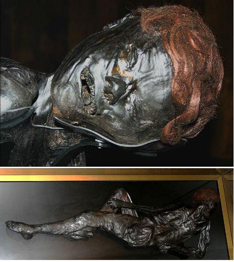 Human Bones Bog Bodies