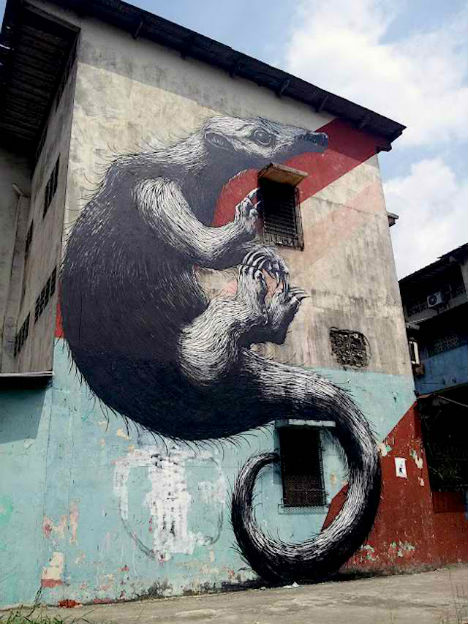 ROA Panama City Street Art 3