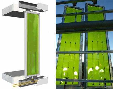 bio facade algae building