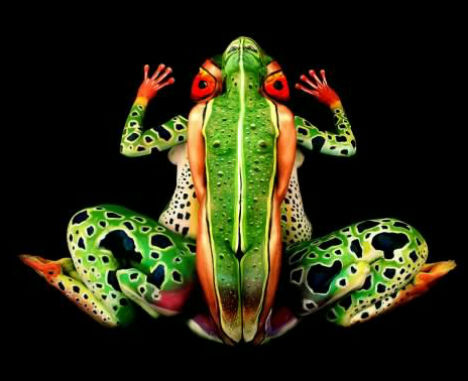 Painted People Frog