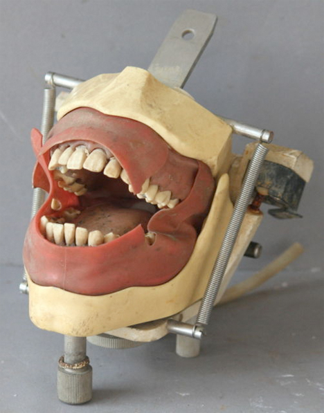 Creepy Dental Vintage Training Device