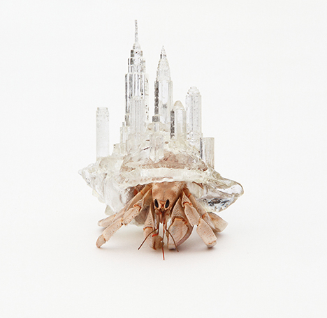 Hermit Crab City 3D Printed Shell 1