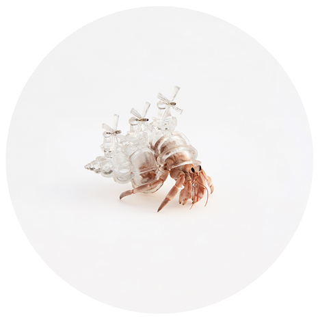 Hermit Crab City 3D Printed Shell 2