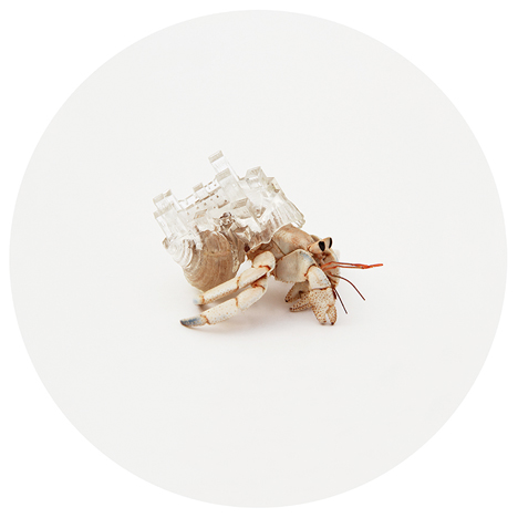 Hermit Crab City 3D Printed Shell 3