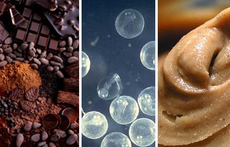 endangered foods