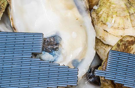 Future Building Materials Artificial Bone