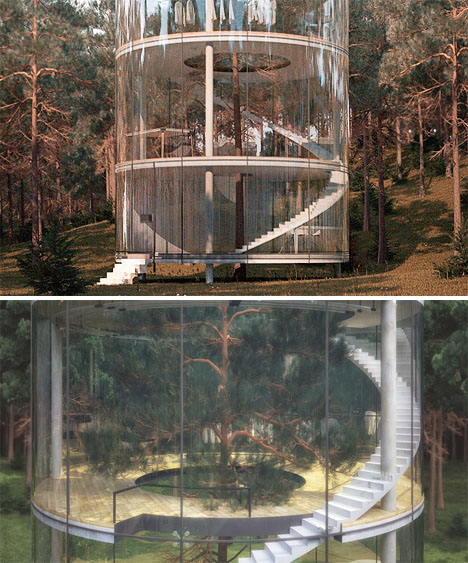 Tree Glass House 2