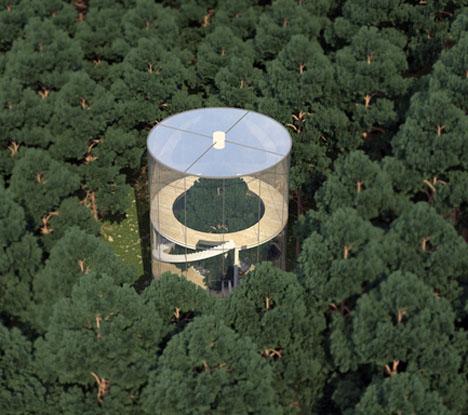 Tree Glass House 3