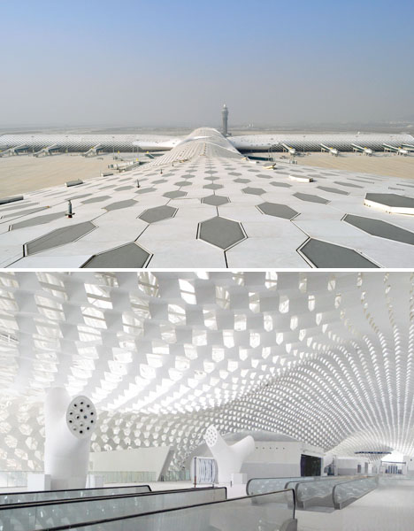 Shenzen Airport Manta Ray 3