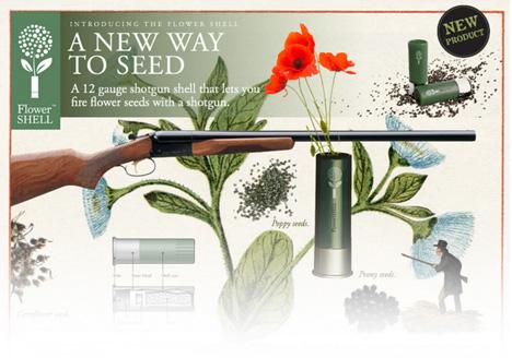 flower seed shell website
