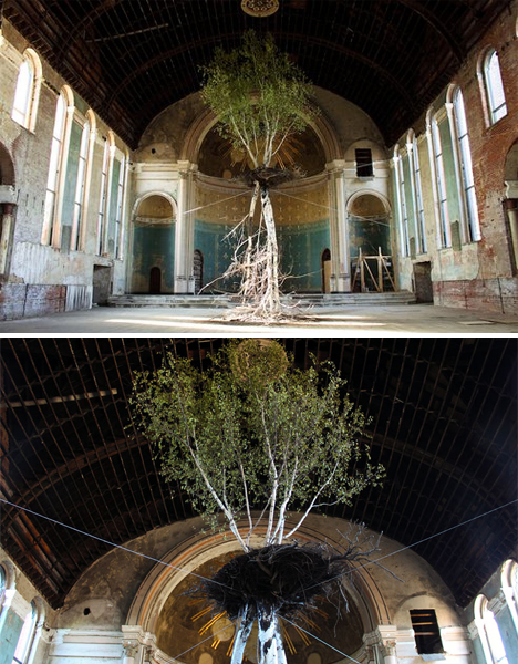 Abandoned Buildings Art Trees Churches