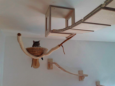 cat ceiling snuggle basket