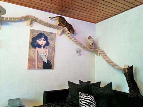 cat interactive furnishing set