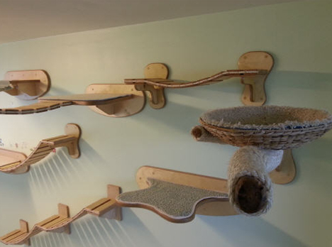 cat wall mounted platforms