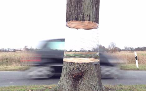 invisible tree wrap illusion