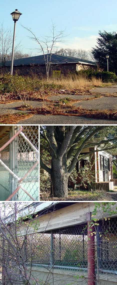 Ocean County Veterinary Clinic Lakewood NJ abandoned
