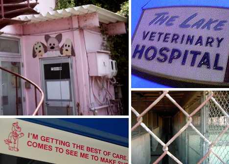 abandoned veterinary clinic