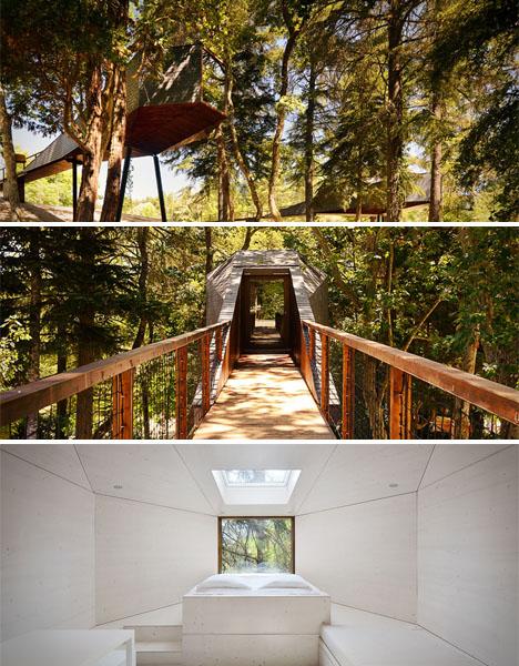 Modern Treehouses Snake