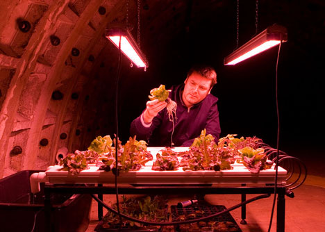 underground crowdfunding green produce