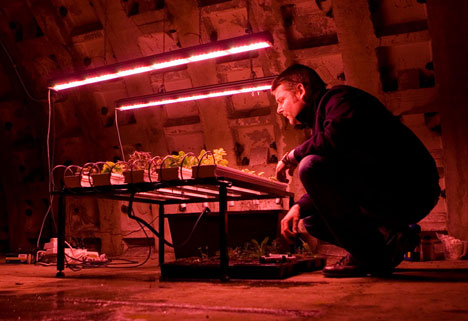 underground farming campaign idea