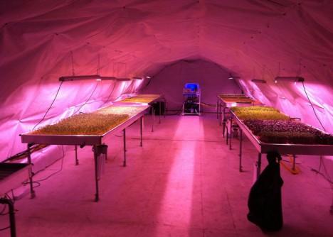 underground hyrdoponic garden farm