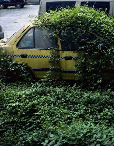 abandoned taxi zombie car China