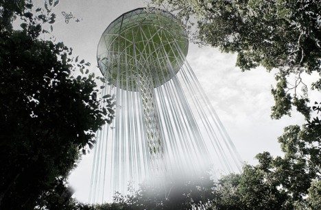 guardian rainforest skyscraper amazon