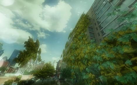 street trees vines plants