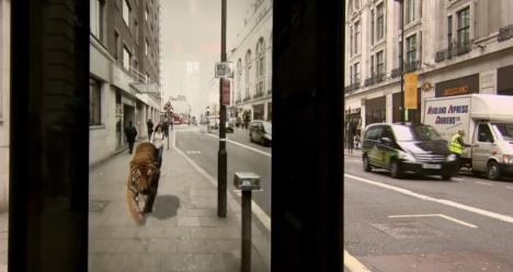 pepsi marketing stunt lion