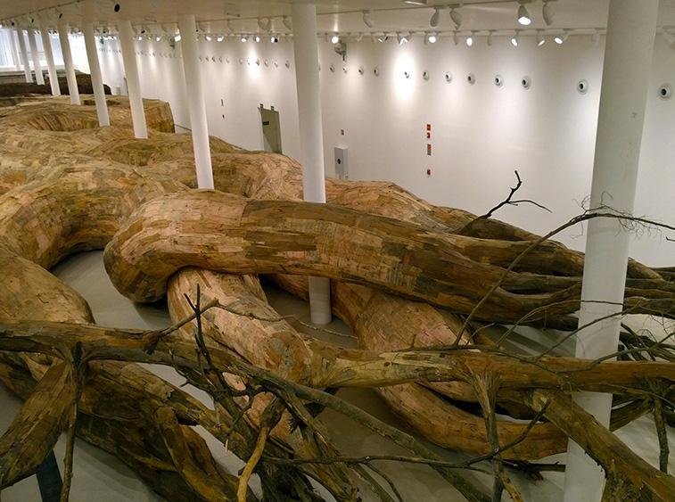 Tree Root Tunnel Installation 1