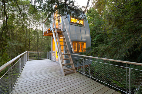 Baumraum Treehouse Solling 3