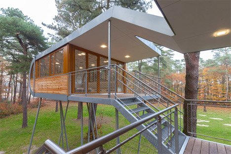 Baumraum Treehouse in Belgium 3