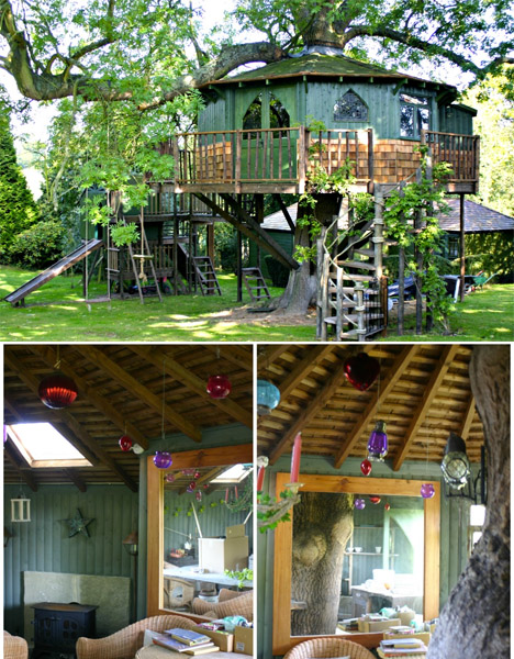 Blueforest Art Studio Tree House
