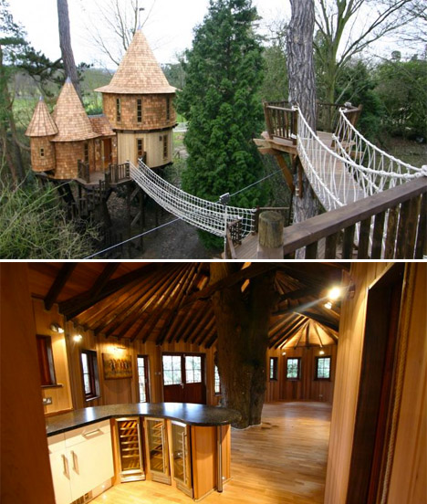 Blueforest Highlife Treehouse
