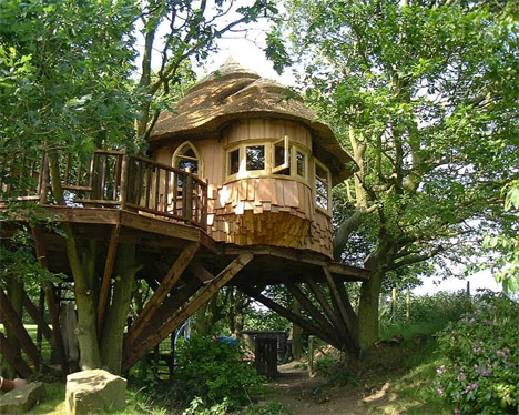 Blueforest Lake DIstrict Treehouse 1