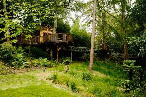 Blueforest Tree House Kitchen 2