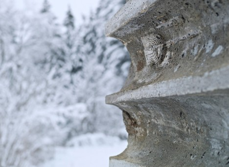 concrete cast remnant detail