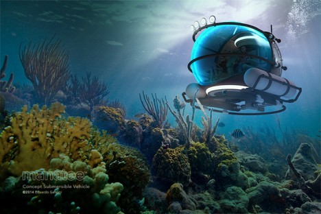 manatee sea floor vision