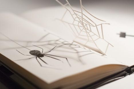 silhouette spider web