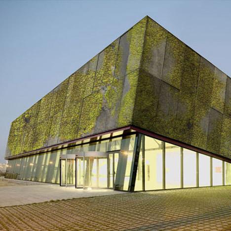 Green Facade Moss Concrete 1