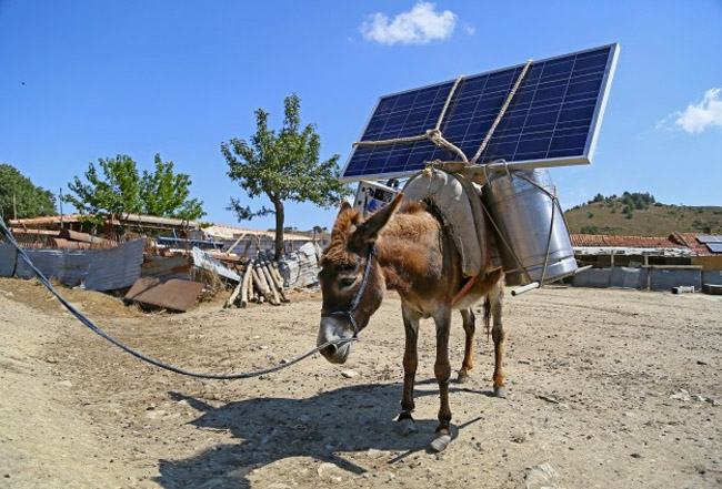 Mobile Solar Main