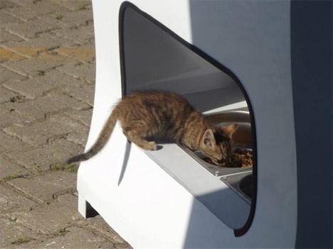Stray Animal Vending Machine 2