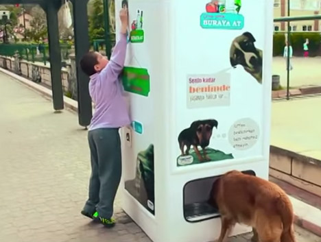 Stray Animal Vending Machine 4
