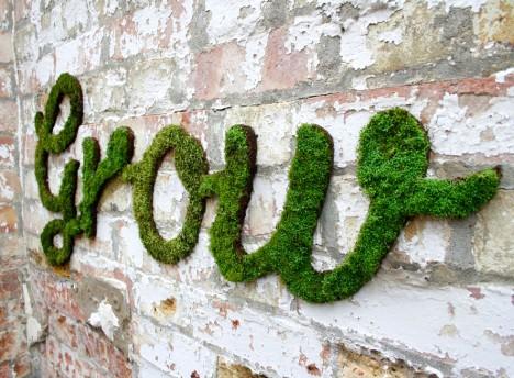 anna garforth grow moss